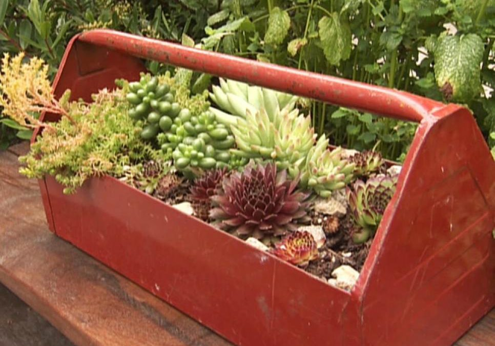 13 Unusual and Upcycled – Container Gardens | Sandhills Outdoor Living